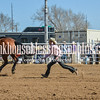 TJHRA Hereford 3 10 18 GirlsGoatTyin-75