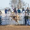 TJHRA Hereford 3 10 18 SaddleBrcStrs-20