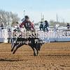 TJHRA Hereford 3 10 18 SaddleBrcStrs-85