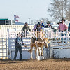 TJHRA Hereford 3 10 18 SaddleBrcStrs-15