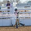 TJHRA Hereford 3 10 18 SaddleBrcStrs-48