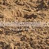 TJHRA Hereford 3 10 18 SaddleBrcStrs-49