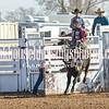 TJHRA Hereford 3 10 18 SaddleBrcStrs-60