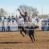 TJHRA Hereford 3 10 18 SaddleBrcStrs-83