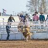 TJHRA Hereford 3 10 18 SaddleBrcStrs-17