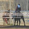 TJHRA Hereford 3 10 18 SaddleBrcStrs-101