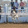 TJHRA Hereford 3 10 18 SaddleBrcStrs-110