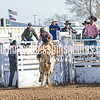 TJHRA Hereford 3 10 18 SaddleBrcStrs-11