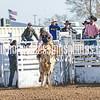 TJHRA Hereford 3 10 18 SaddleBrcStrs-11