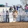 TJHRA Hereford 3 10 18 SaddleBrcStrs-12