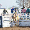 TJHRA Hereford 3 10 18 SaddleBrcStrs-8