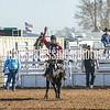 TJHRA Hereford 3 10 18 SaddleBrcStrs-69