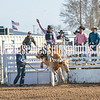 TJHRA Hereford 3 10 18 SaddleBrcStrs-16