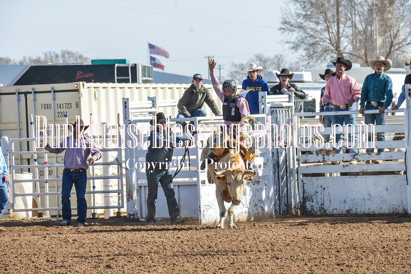 TJHRA Hereford 3 10 18 SaddleBrcStrs-13
