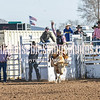 TJHRA Hereford 3 10 18 SaddleBrcStrs-13