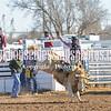 TJHRA Hereford 3 10 18 SaddleBrcStrs-28