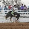 THSRA,Hereford 3 10 18 Bulls-119