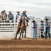 THSRA,Hereford 3 10 18 SaddleBronc-13