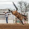 THSRA,Hereford 3 10 18 SaddleBronc-26