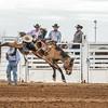 THSRA,Hereford 3 10 18 SaddleBronc-19