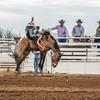 THSRA,Hereford 3 10 18 SaddleBronc-18