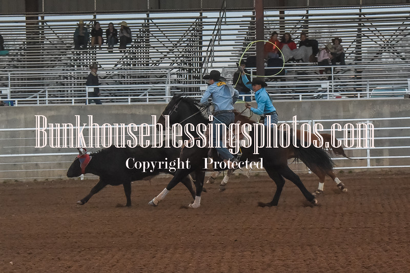 THSRA,Hereford 3 10 18 TS TeamRoping-11
