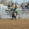 THSRA Hereford 3 11 18 Bulls-47