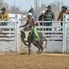 THSRA Hereford 3 11 18 Bulls-16
