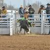 THSRA Hereford 3 11 18 Bulls-10