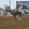 THSRA Hereford 3 11 18 SaddleBronc-34