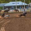 XIT 2018 PRCA ThurTeamRoping-92