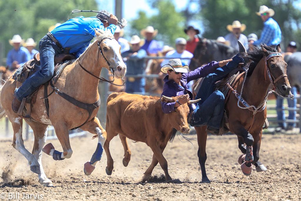 Steer Wrestling, Choteau Montana