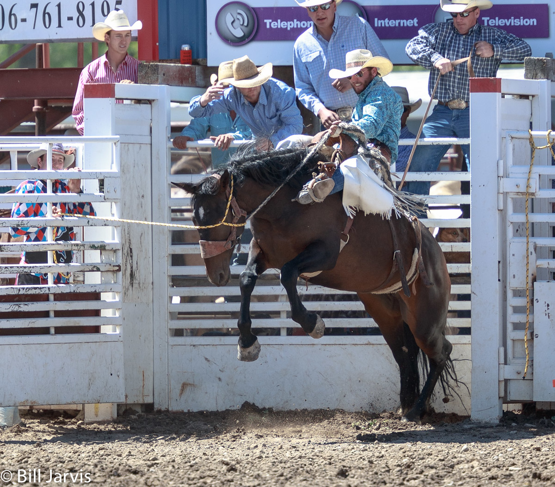 Saddle Broncs, Choteau Montana