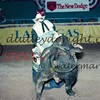 NFR1997-5-4787-19ac jerryNORTON CoyoteHills Scarface