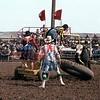 3949-09c  chariot race stanHAM  rickCHATMAN rickKINNEY  roachHEDEMAN   AlpineTx 1982