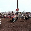 3949-08c  chariot race stanHAM  rickCHATMAN rickKINNEY  roachHEDEMAN   AlpineTx 1982