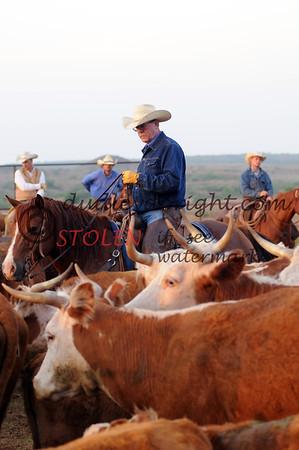 Ranch Cowboy and Work- May, 2008