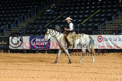 WRCA2011-Friday am cowhorses