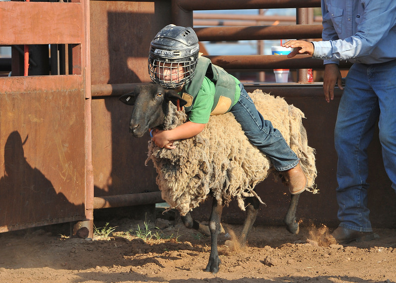 20120628_Rodeo_0039