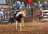 20120629_Rodeo_038a