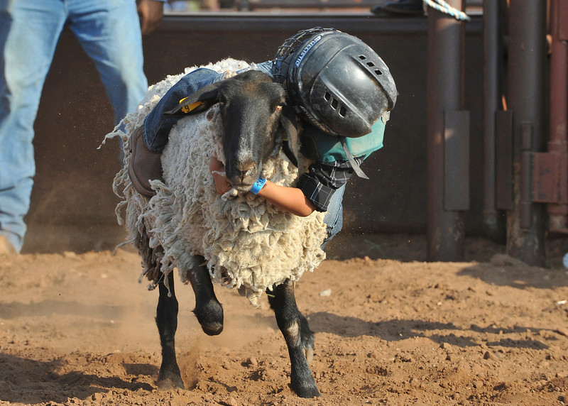 20120628_Rodeo_0054
