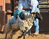 20120628_Rodeo_0002