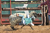 20120628_Rodeo_0004