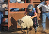 20120628_Rodeo_0034