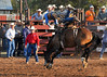 20120629_Rodeo_029a