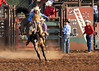 20120629_Rodeo_026