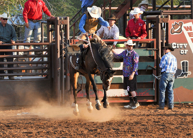 20120629_Rodeo_022