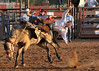20120629_Rodeo_046a