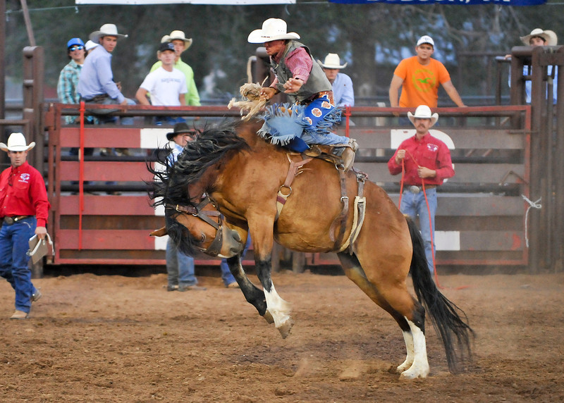 20120629_Rodeo_096a