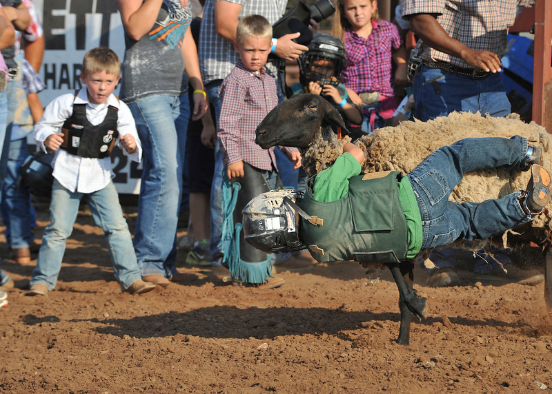 20120628_Rodeo_0041